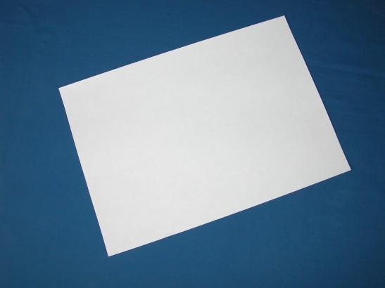 Das offizielle Entschuldigungsschreiben der NSA
